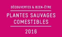 Découvertes & Bien-être - Plantes sauvages comestibles / 2016